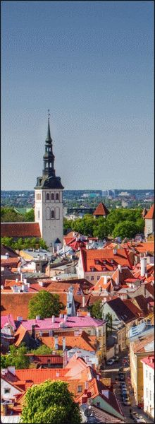 Требование к фото на визу в Эстонию